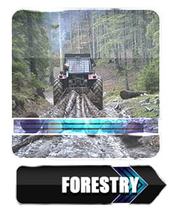 Forestry Winches by Ramsey Winch